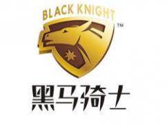 武汉黑马骑士驾驶学院